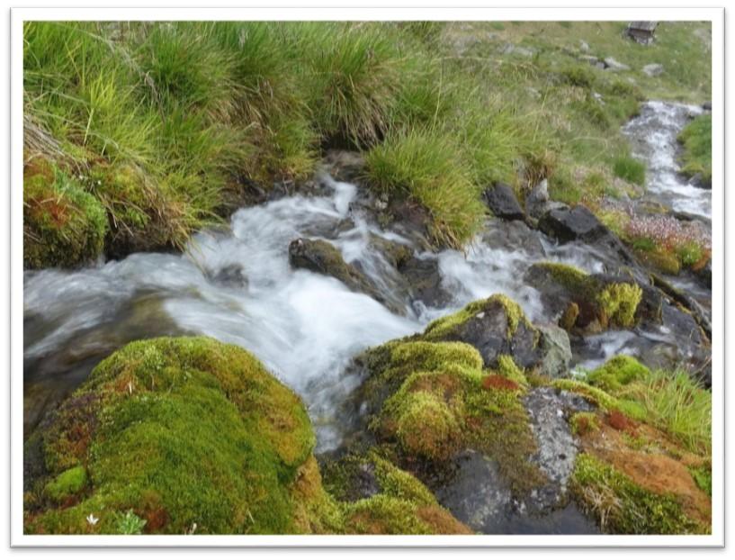 Quellwasser Mariastein (BL)