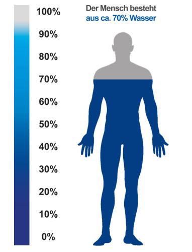 Wasser-im-Körper